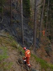 Hasiči v lese u Jetřichovic likvidovali požár
