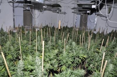 Drogy na Šluknovsku. Foto: CPJ