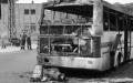 autobus1_0